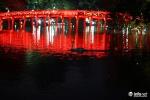 Đêm qua, đàn thiên nga mới thả ở Hồ Gươm bị bắt đi hết