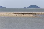 Đảo cát thứ 2 'mọc' giữa biển Cửa Đại từ bao giờ?
