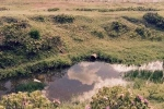 Xả đập bất thường gần nơi Formosa chôn chất thải