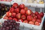 Mối họa khôn lường từ trái cây nhập lậu 'đội lốt' đặc sản vùng miền