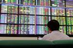 Điều gì khiến mã cổ phiếu này tăng không tưởng 300% trong bối cảnh thị trường giảm sâu?