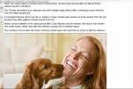 Để chó liếm mặt, một phụ nữ bị nhiễm trùng máu suýt chết