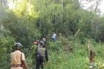 Rúng động thảm án mẹ đẻ sát hại 3 con, đốt nhà rồi trốn vào rừng