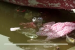Ngán ngẩm cảnh rác ngập bến đò sau ngày khai hội chùa Hương