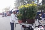 Chở hoa thuê ngày Tết, kiếm tiền triệu mỗi ngày ở Đà Nẵng