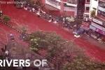 Dòng sông máu đỏ ngòm len lỏi trong thành phố sau lễ hội