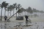 Áp thấp nhiệt đới mạnh lên thành bão số 4, mưa lớn bao trùm cả Bắc Bộ