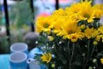 Bày hoa trên bàn thờ: Cần tránh những điều này nếu không muốn phạm đại kỵ
