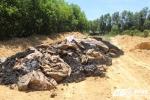 Trang trại nhà giám đốc công ty môi trường chôn 100 tấn chất thải của Formosa