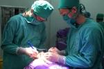 Quảng Ninh: Phẫu thuật thành công bệnh nhân 3 tuổi bị não úng thủy