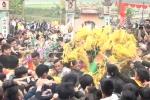 Video: Hàng trăm người lao vào cướp bông cầu mùa ở Vĩnh Phúc