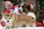 Nhật Bản muốn tặng chó quý cho ông Putin, Nga từ chối