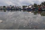 Tìm cách giải cứu dòng sông bị ô nhiễm nặng ở đảo ngọc Phú Quốc