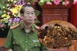 Vây sào huyệt, bắt trùm ma túy ở Sơn La: Vì sao sau 5 năm mới phá án?