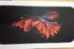 Lộ ảnh vỏ hộp 'cá Xiêm bơi lội' của iPhone 6S trước giờ G