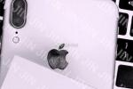 iPhone 8 lộ diện với cụm camera kép nằm dọc