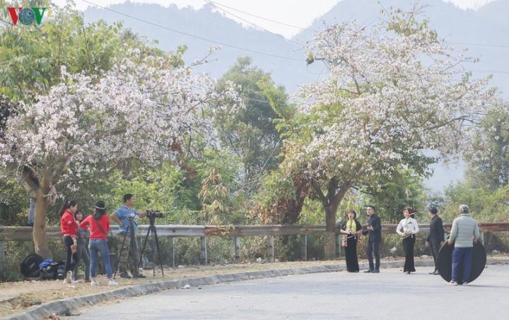 Ngây ngất mùa hoa ban nở ở Điện Biên - 10