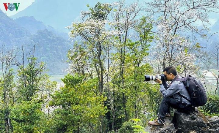 Ngây ngất mùa hoa ban nở ở Điện Biên - 11