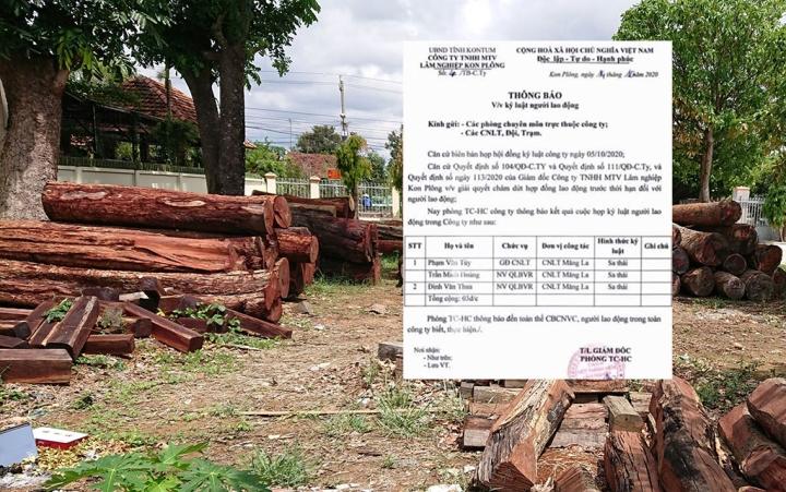 Sa thải Giám đốc và 2 cán bộ bảo vệ rừng ở Kon Tum - 1