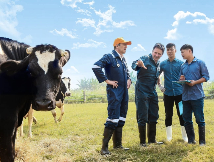 Cô Gái Hà Lan và hành trình kiến tạo giá trị cho ngành chăn nuôi bò sữa bền vững - 3