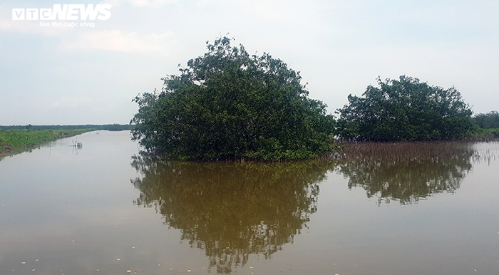 Gần 400ha đất bị bỏ quên ở Hải Phòng: Sở TN-MT vẫn 'im hơi lặng tiếng' - 3