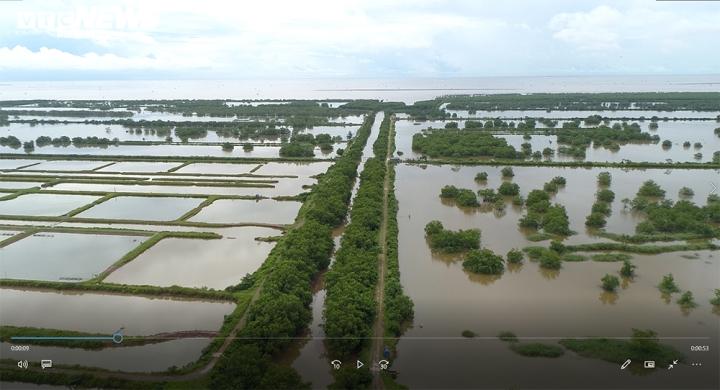 Gần 400ha đất bị bỏ quên ở Hải Phòng: Sở TN-MT vẫn 'im hơi lặng tiếng' - 1