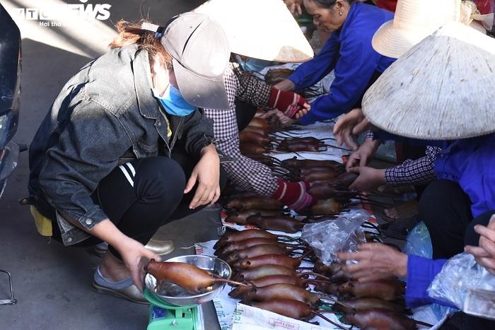 Làng bắt chuột đồng ở Hải Dương ngày chính vụ làm đến đâu hết đến đấy - 2