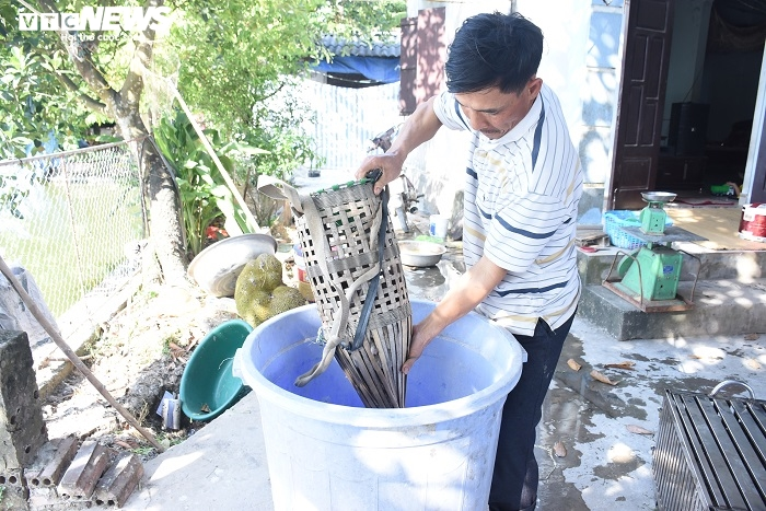 Làng bắt chuột đồng ở Hải Dương ngày chính vụ làm đến đâu hết đến đấy - 5