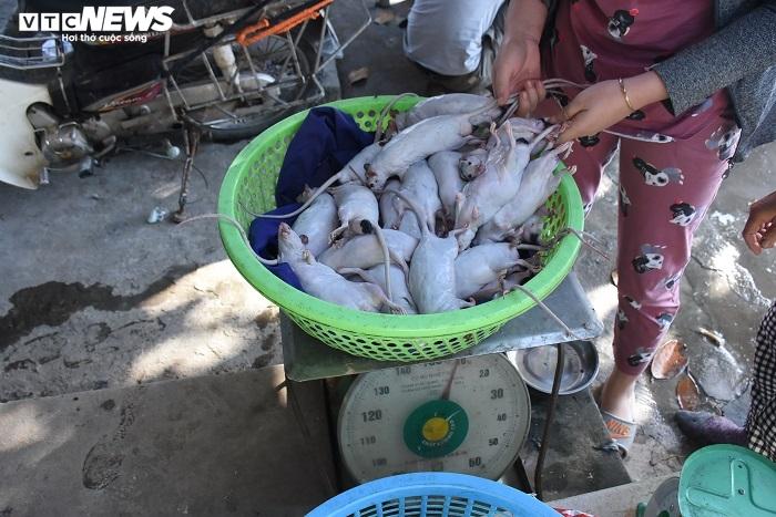 Làng bắt chuột đồng ở Hải Dương ngày chính vụ làm đến đâu hết đến đấy - 10