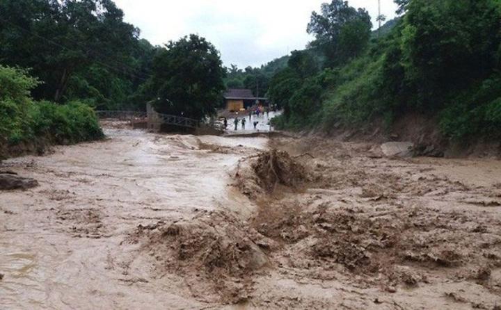 Chuyên gia: Xây dựng quá nhiều nhà máy thủy điện dẫn tới việc mất rừng - 3