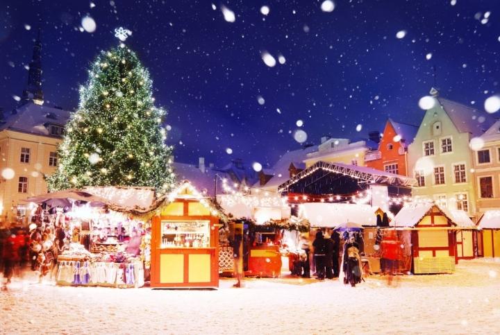 Cây thông Noel có nguồn gốc từ đâu? - 3