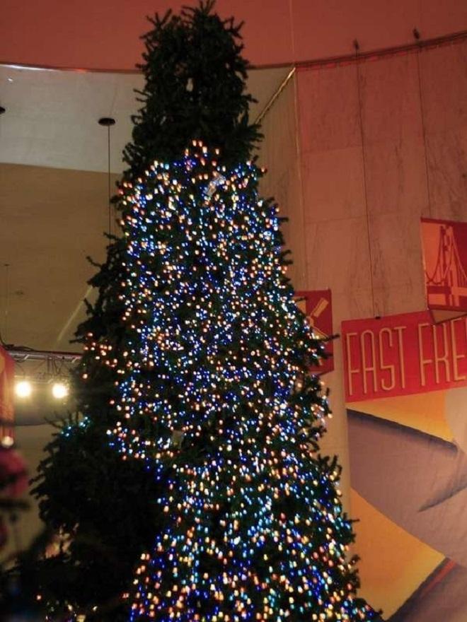 Chết cười xem những cây thông Noel xấu xí đến mức thảm họa - 9