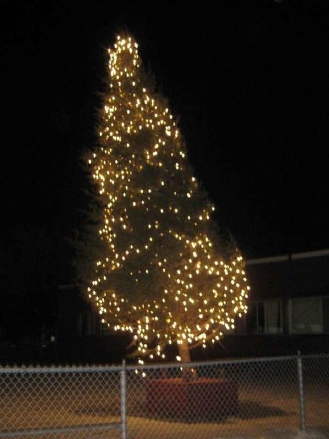 Chết cười xem những cây thông Noel xấu xí đến mức thảm họa - 11