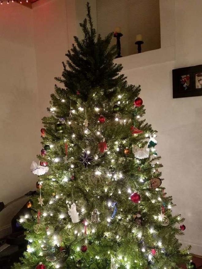 Chết cười xem những cây thông Noel xấu xí đến mức thảm họa - 4