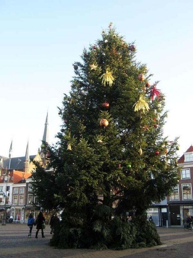 Chết cười xem những cây thông Noel xấu xí đến mức thảm họa - 6