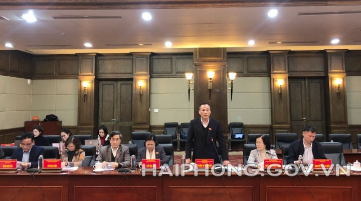Hai Phong does not accept projects that do not meet environmental conditions - 2