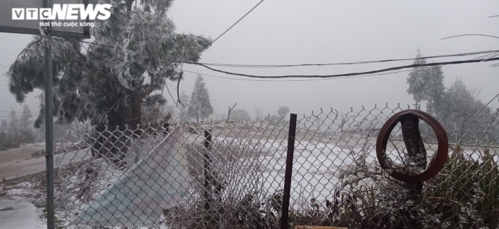 Lào Cai: Tuyết phủ trắng xóa, Y Tý đẹp như châu Âu - 14