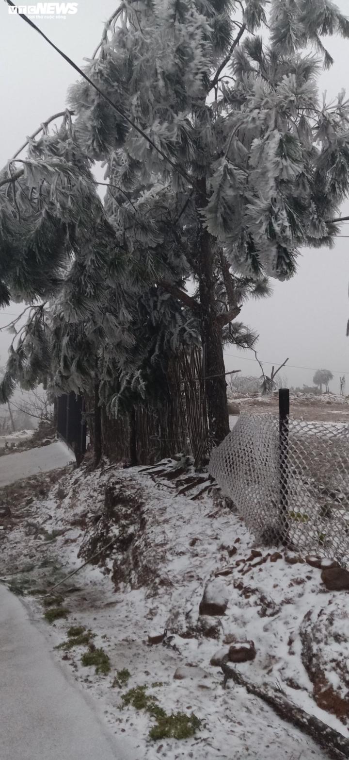 Lào Cai: Tuyết phủ trắng xóa, Y Tý đẹp như châu Âu - 17
