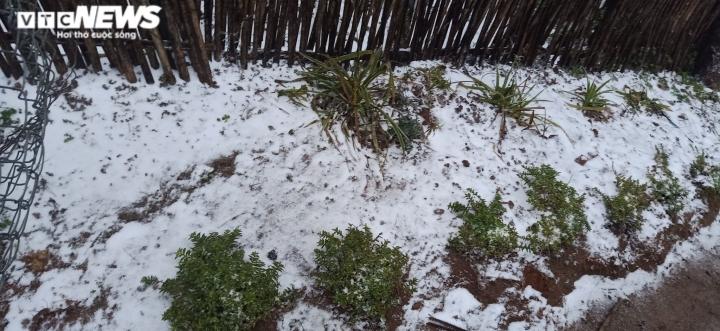 Lào Cai: Tuyết phủ trắng xóa, Y Tý đẹp như châu Âu - 16