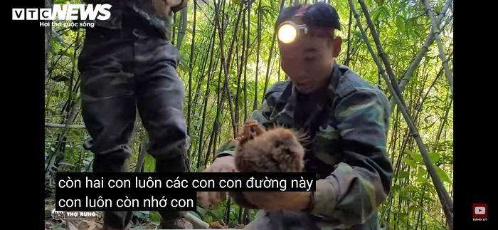 Xác minh nhóm thanh niên vào rừng quay clip săn bắt dúi tự nhiên - 2