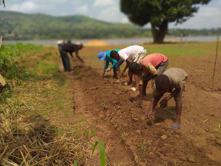 Nữ sỹ quan Việt: Từ 'gieo chữ', dạy trồng rau đến chống COVID-19 ở Trung Phi - 1