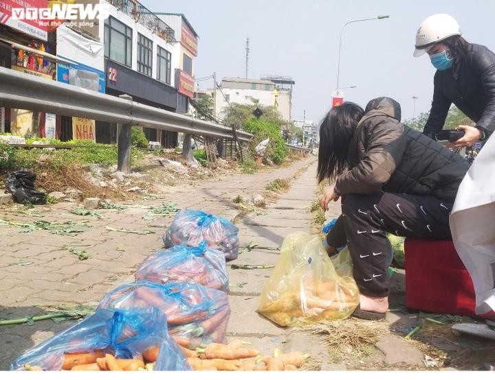 Ảnh: 15 tấn rau củ của nông dân Hải Dương hết veo sau vài tiếng 'giải cứu' - 2