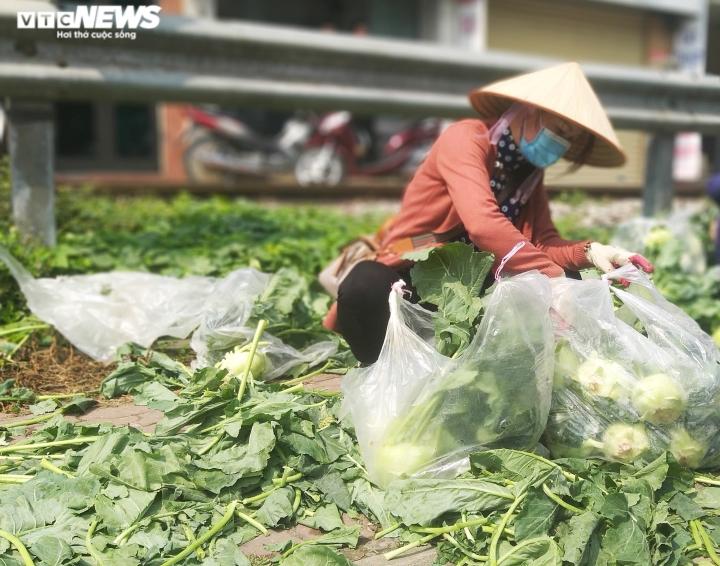 Ảnh: 15 tấn rau củ của nông dân Hải Dương hết veo sau vài tiếng 'giải cứu' - 1