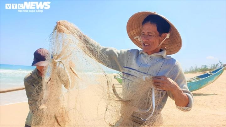 Ảnh: Vươn khơi trúng đậm cá hố, ngư dân Quảng Nam thu bạc triệu mỗi ngày - 1