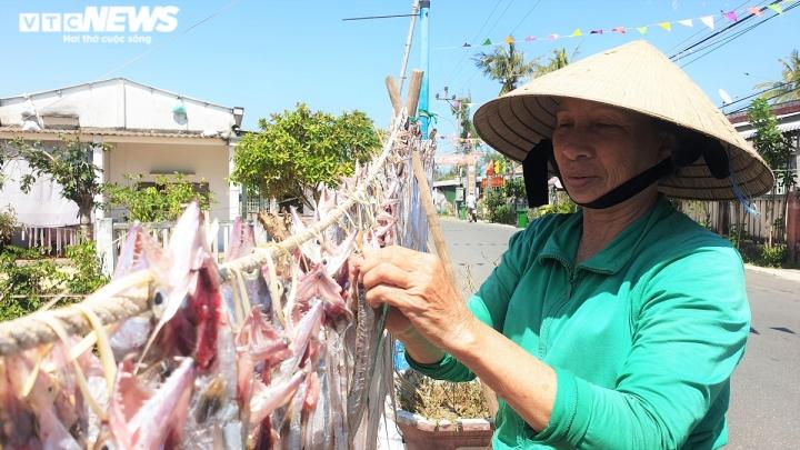 Ảnh: Vươn khơi trúng đậm cá hố, ngư dân Quảng Nam thu bạc triệu mỗi ngày - 6