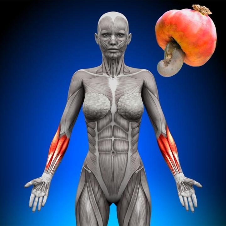 7 loại thực phẩm và đồ uống giúp tăng cường sức khỏe của phụ nữ - 5