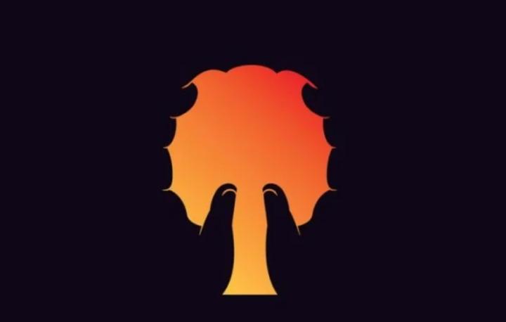 Trắc nghiệm vui đoán tính cách: Bạn nhìn thấy cây, bàn tay hay bộ não? - 1
