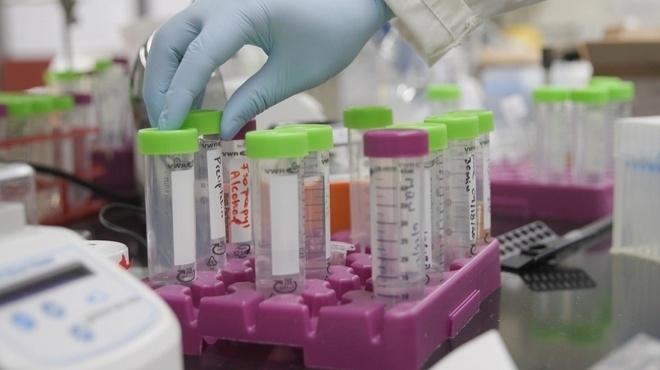 Phát hiện biến chủng SARS-CoV-2 mới tại Mỹ - 1