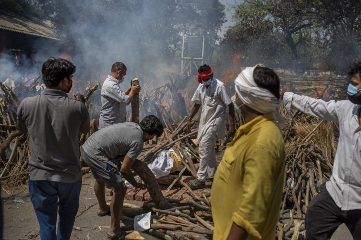 Ấn Độ chặt cây trong công viên, lấy củi hoả táng bệnh nhân COVID-19 - 5