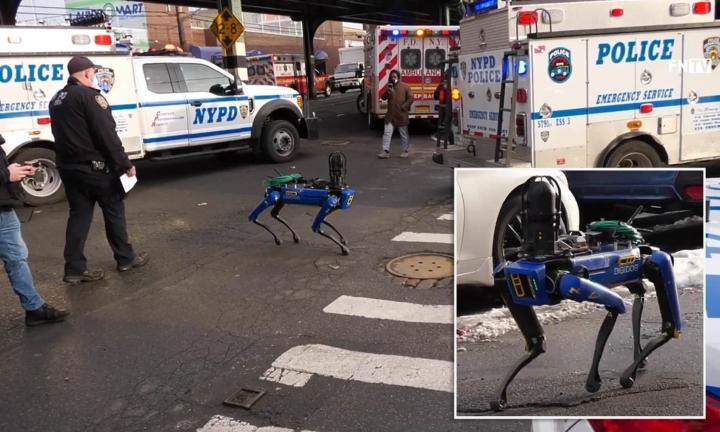 Người New York ghét cay, ghét đắng chó robot tuần tra của cảnh sát - 1